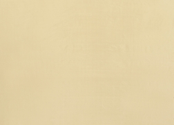 Шелковая гардинная ткань золотистого цвета DUPION SILK (Gold)