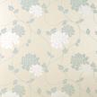 Бумажные обои в крупные цветы хризантемы голубого и белого цвета ISODORE (Duck Egg)