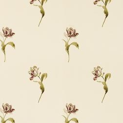 Бумажные обои в крупные цветы тюльпана GOSFORD (Cranberry)