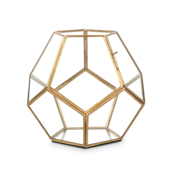 Ваза-террариум для растений HEXAGONAL TERRARIUM SMALL 22*21 (Clear)