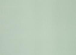 Шелковая ткань для штор светло-зеленого цвета DUPION SILK (Eau De Nil)