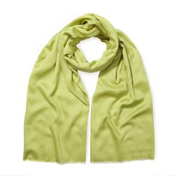 Красивый осенний шарф цвета лайма SH 406 Lime